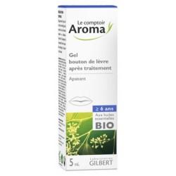Le Comptoir Aroma GEL BOUTON DE Lèvre après traitement 5 ML