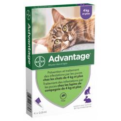 Advantage 80 Solution Antipuce Pour Chat et Lapin de 4kg et Plus 4 Pipettes