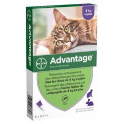 Advantage 80 Solution Antipuce Pour Chat et Lapin de 4kg et Plus 6 Pipettes